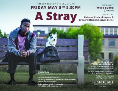 a-stray